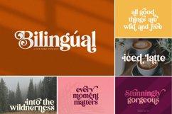 The Elegant Font Bundle - Vol 02 Product Image 2