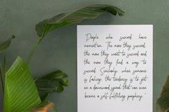 Birdflocks Script Font Product Image 5