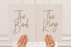 Birdflocks Script Font Product Image 2