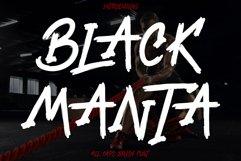 Black Manta Brush Product Image 1