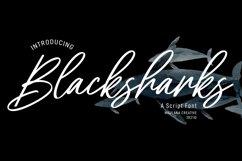 Blacksharks Script Font Product Image 1