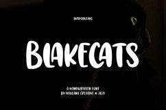 Blakecats Handwritten Font Product Image 1