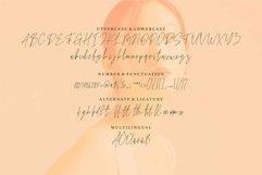 Web Font Blange - A Handwritten Font Product Image 4