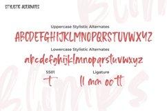 Blipms-Brush Font Product Image 6