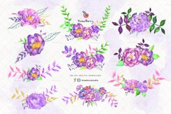 Purple Flowers Watercolor Clipart| Drawberry CP061 Product Image 2