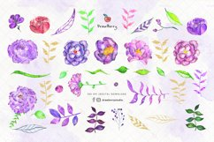 Watercolor Purple Flowers Clipart  Drawberry CP062 Product Image 2