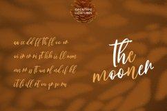 Bloomshine Script Font Product Image 6