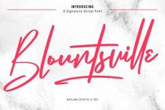Blountsville Signature Script Font Product Image 1