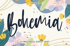 Web Font Bohemia - Sweet Script Font Product Image 1