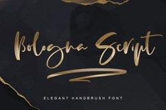Bologna Script Product Image 1
