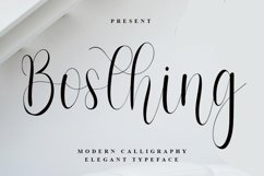 Bosthing - Modern Calligraphy Font Product Image 1