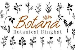 Botana - Botanical Dingbat Product Image 1