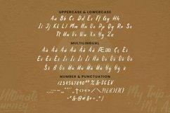 Web Font Bourbon Font Product Image 3