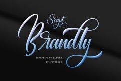 Brandly script font modern Product Image 1