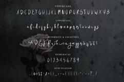 Brittania Handwritten Font Product Image 3
