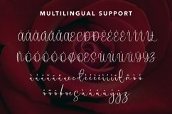 Brightlight - Beauty Calligraphy Font Product Image 4