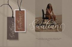 Briliantti beautiful Script Font Product Image 6