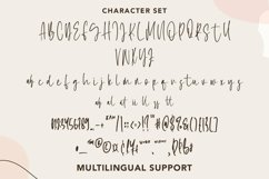 Web Font Brilliant - Beautiful Script Font Product Image 2