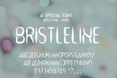 Bristleline Font | Open Type & Woff Product Image 2