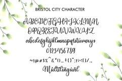 Bristol City Product Image 2
