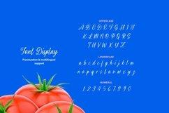 Web Font Brisyan Font Product Image 3