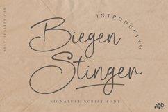 Biegen Stinger - Script Font Product Image 1