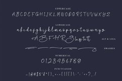 Biegen Stinger - Script Font Product Image 3