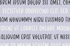 BRUSH FONT BUNDLE - 20 FONTS - By Blush Font Co. Product Image 4