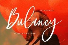 Web Font Bulaney - A Beauty Script Font Product Image 1