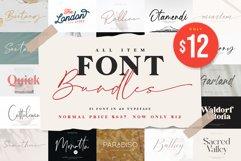 All Item Font Bundles Product Image 1