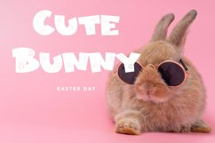 Bunny Friendly - Easter Display Font Product Image 5