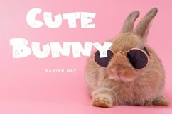 Web Font Bunny Friendly - Easter Display Font Product Image 6