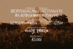 Web Font Burets - A Handwritten Font Product Image 6