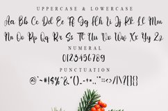 Buttertime - A Elegant Handwritten Font Product Image 3