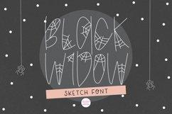 """BLACK WIDOW"" Halloween Sketch Font - Single Line/Hairline Product Image 1"