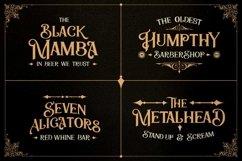 Zailander - Vectorian Vintage Typeface Product Image 5