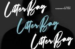 Web Font Litterbag - Fancy Script Font Product Image 1