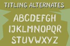 Wonderland Scratch | Pen Sketch Font Product Image 3