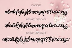 Sweet Tooth. A handwritten script font Product Image 3
