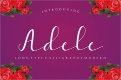 Web Font Adele Script Product Image 1