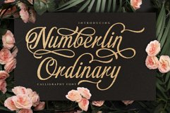 Numberlin Ordinary Product Image 1