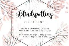 BLINDSPOTTING SCRIPT FONT Product Image 1