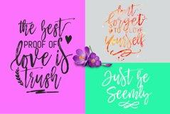 Mustache Script Font Trio & Swash Product Image 4