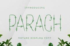 Web Font Parach Font Product Image 1