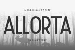 Allorta Product Image 1