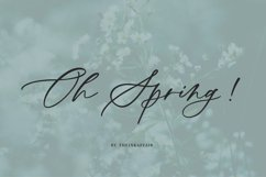 Oh Spring! Calligraphy Font Product Image 1
