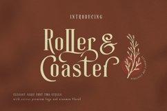 Roller Coaster Elegant Serif Extra Product Image 1