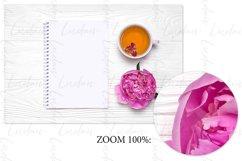 Peony. Styled stock photo set. Product Image 2