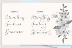 Salsadila Script Product Image 5