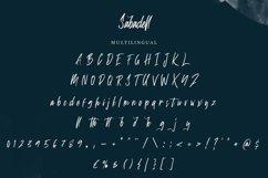 Sabadell   Modern Brush Font Product Image 4